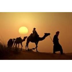 España y Marruecos, salidas acompañadas